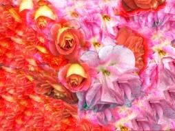 Elisabeth Rass, FEUERSTURM, Series WALTZ OF ROSES, digital photography