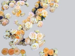 Elisabeth Rass, DIE SCHAUKEL, Series WALTZ OF ROSES, digital photography