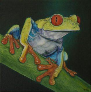Daisy Gold, ROTAUGENFROSCH, Öl und Tempera auf Leinwand, 40 x 40 cm, 2011